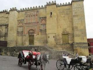 koetsje rijden in stad Cordoba