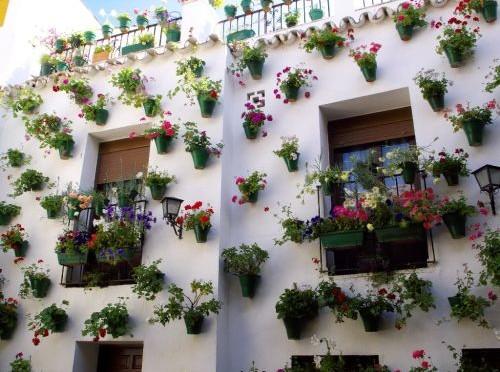 Patios binnenplaatsen in stad Cordoba