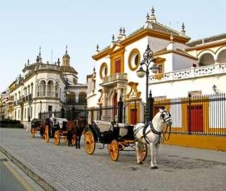 koetsje rijden door de stad Sevilla