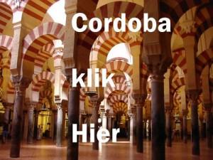 Mezquita-de-Cordoba in Andalusie bezoeken